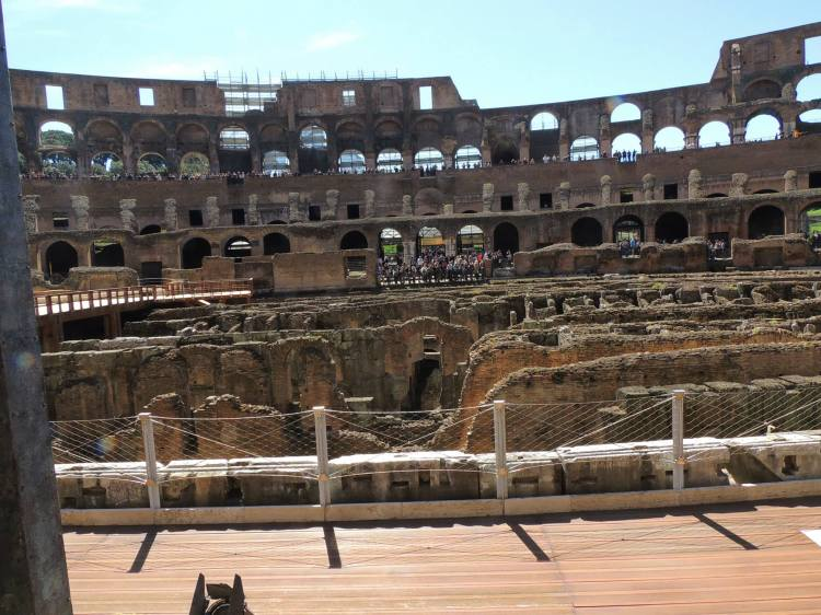 houses inside the coleseum